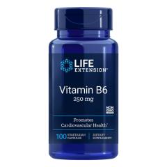 Vitamina B6 250 mg Life Extension The Vitamin Shoppe Panamá